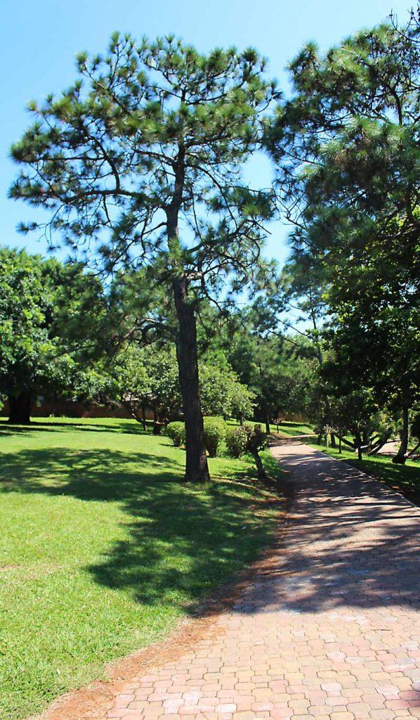 Japanses Gardens Durban
